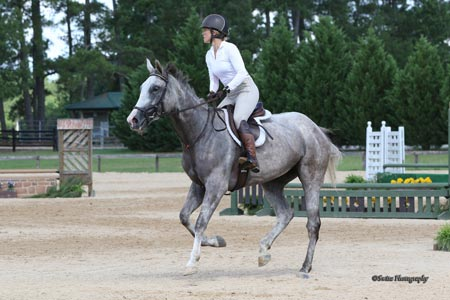 Ashtens The Carolinas Equestrian 03