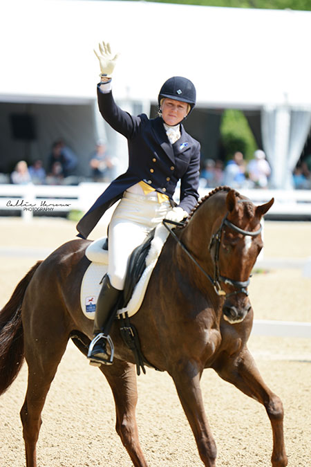 Allison Springer The Carolinas Equestrian
