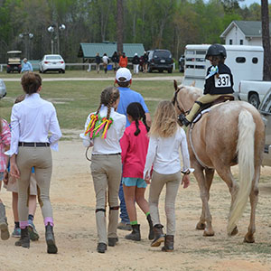 About The Carolinas Equestrian